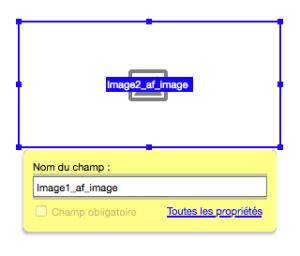 Champ de formulaire de type image