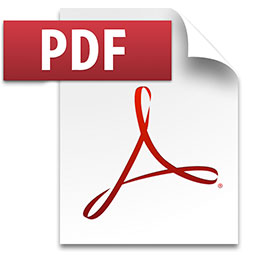 Fichier PDF icone